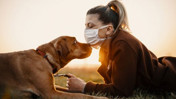 Socializing Your Dog in a Changing World